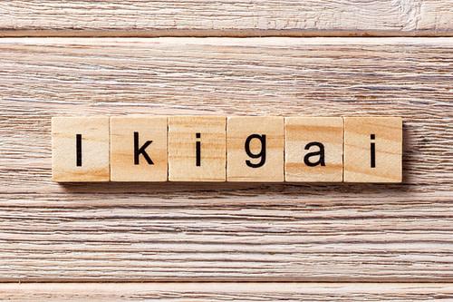 comment remplir son ikigai